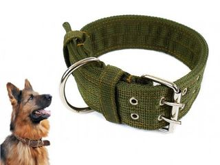 Canvas Collar - Olive