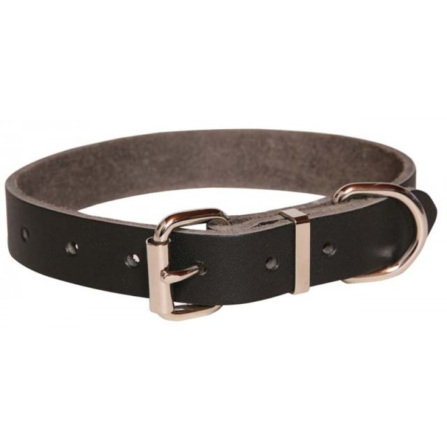 Heavy Duty Leather Dog Collar 19mm