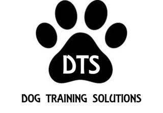 DOG TRAINING SOLUTIONS